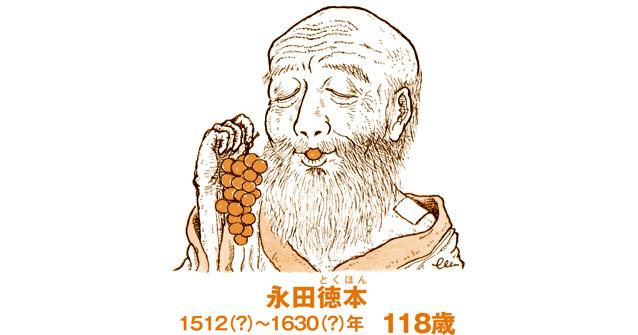 ブドウの棚栽培を広めた戦国時代の医者の「長寿伝説」