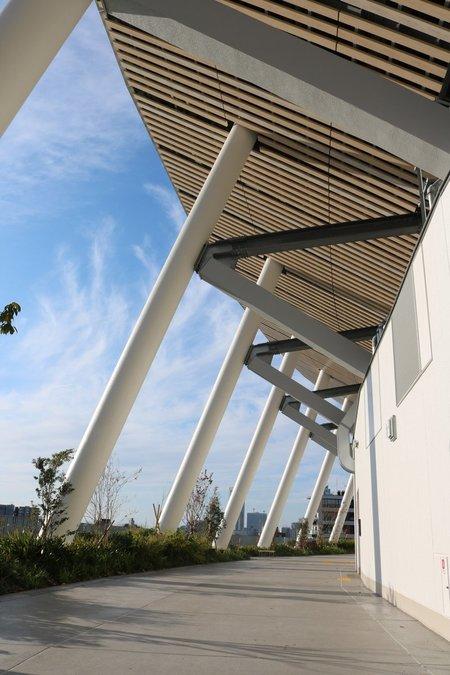 新国立競技場「空の杜」