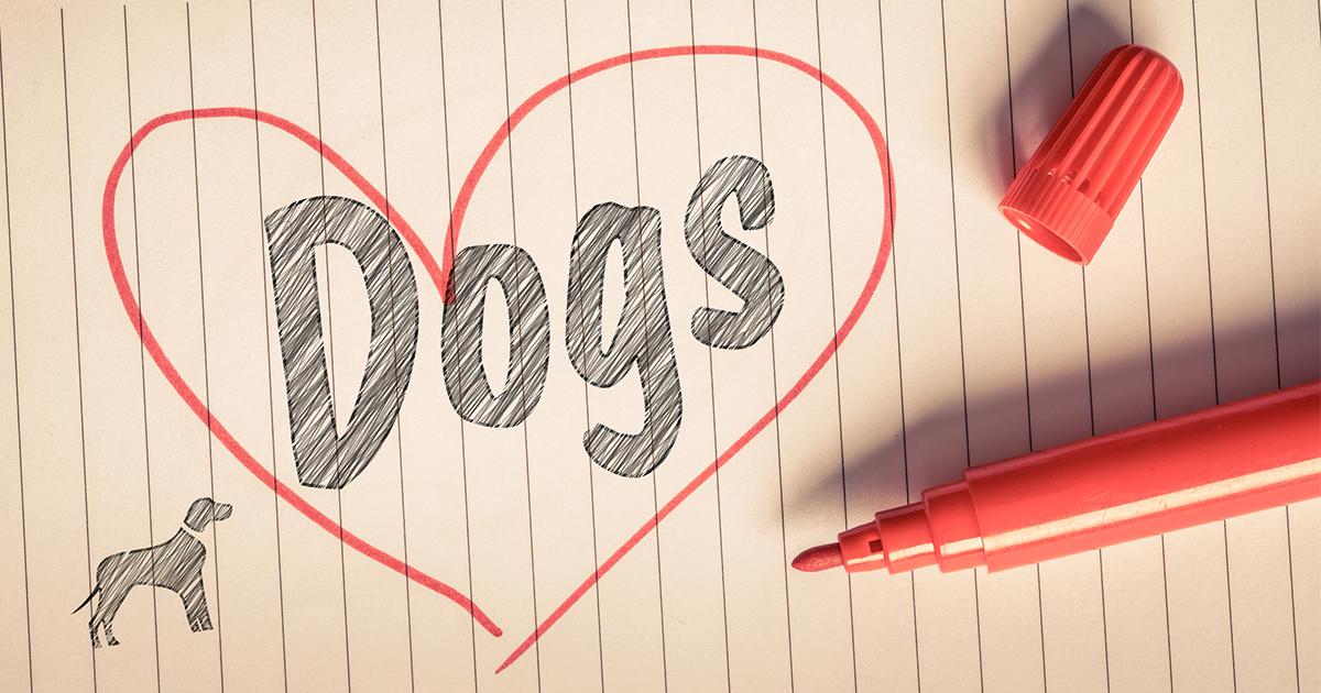 """""""I like dog.""""と言ったら「えっ、犬の肉が好き!?」 ネイティブに通じない、間違いだらけのニッポン英語"""