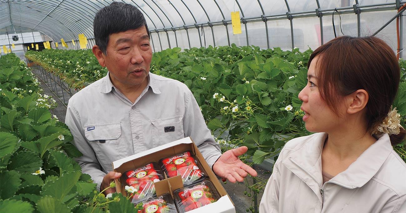 「儲かる農家」の将来像、中小キラリ農家vs大規模レジェンド農家
