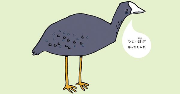 鳥の子育ては、人間より残酷?オオバンの「ドSすぎる教育方針」とは