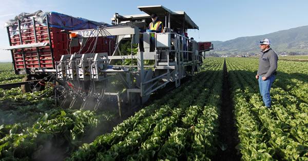 米農業が迫られる自動化、移民規制で人手不足に