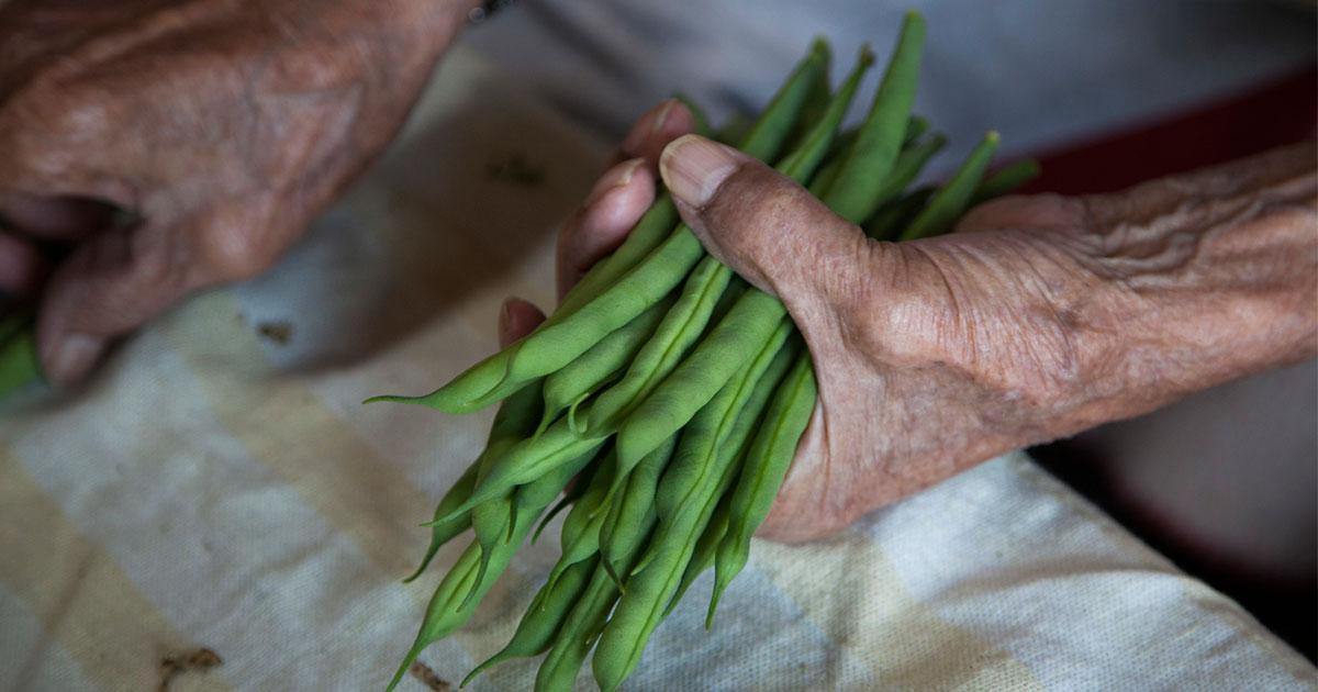 世界の統計データが教える、長生きする人に共通する食べ方とは?