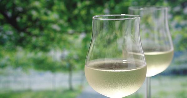 ワイン好きなら知っておきたい「ブドウと気候」の話