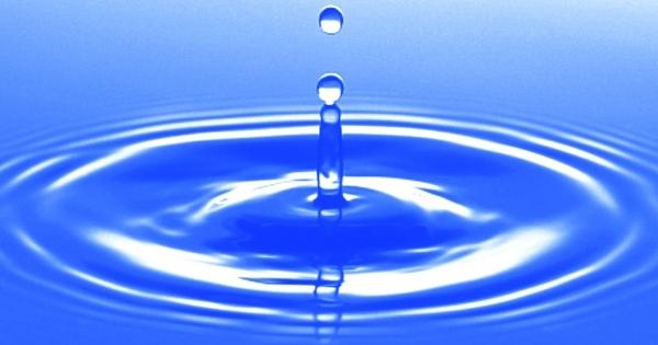 タモリ、ドラッカー、ホリエモン……誰も教えてくれなかった「水の一白」の驚くべき正体