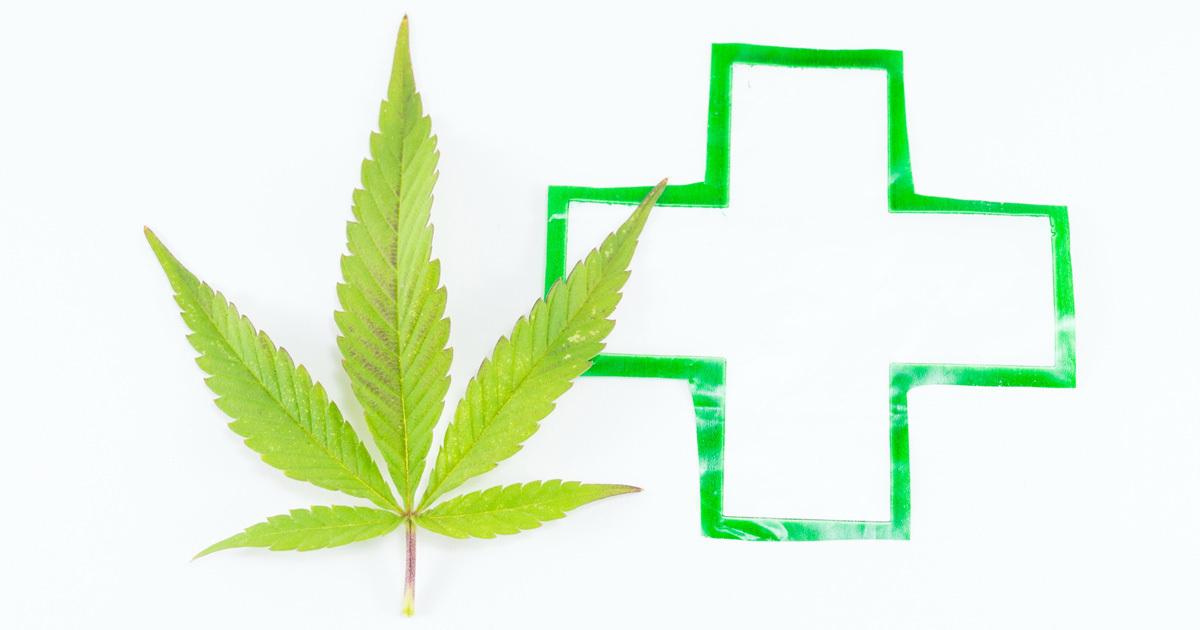 高樹沙耶被告でケチがついた「医療用大麻」解禁はあるのか