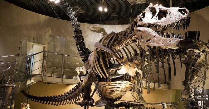 世界に負けない科学教育がある場所、国立科学博物館へ行こう