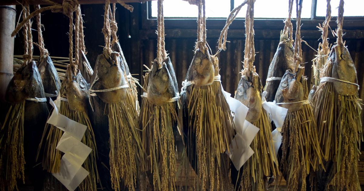 なぜカツオの塩漬けは日本で唯一、伊豆だけに残ったのか