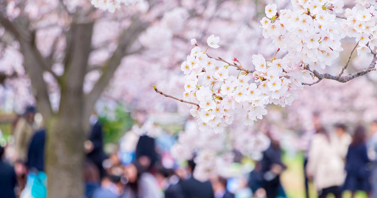 春の「ぐだぐだ飲み会」が会社員の生産性をこれだけ落とす!