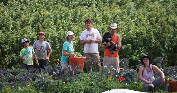 小学生男子が米国での農作業で開眼、他人と違う「生きる喜び」
