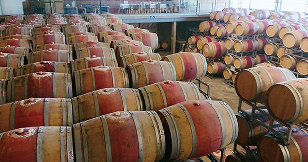 チリ、再発見と発見と。チリとチリワインのおまとめ