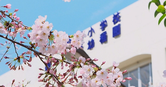 桜の季節の悪天候