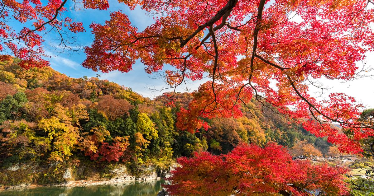 なぜ埼玉県はディスられるのが伝統芸になってしまったのか
